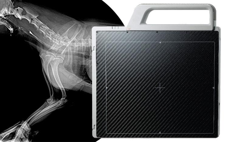 A Revolution in Veterinary Imaging